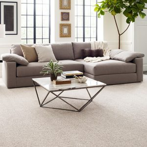 Comfortable carpet flooring | Choice Floor Center